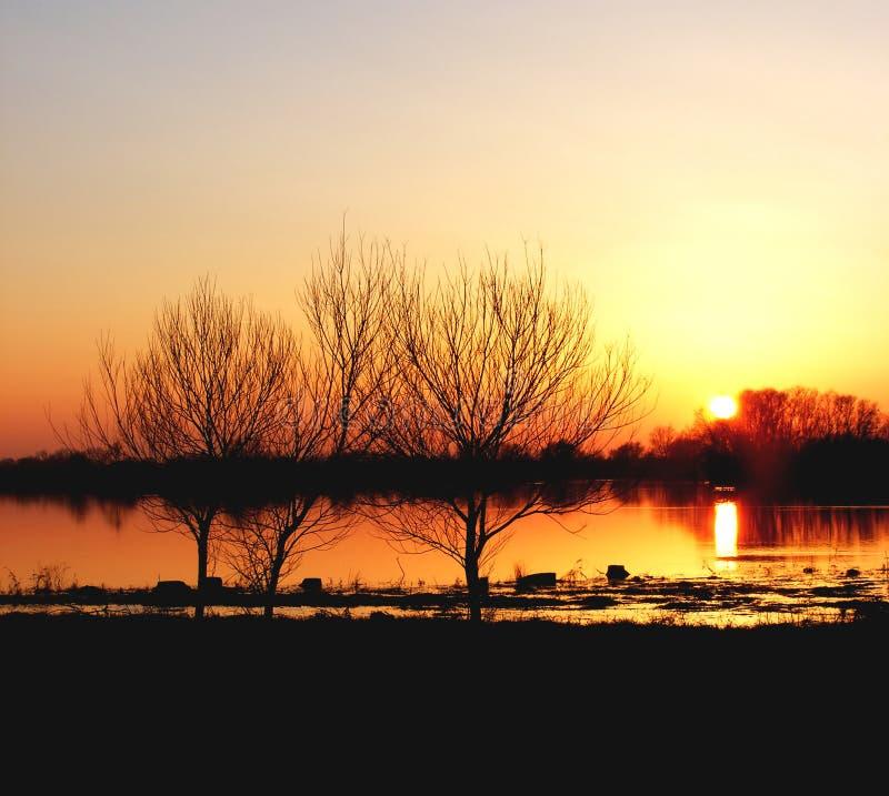 холодная зима захода солнца стоковые изображения