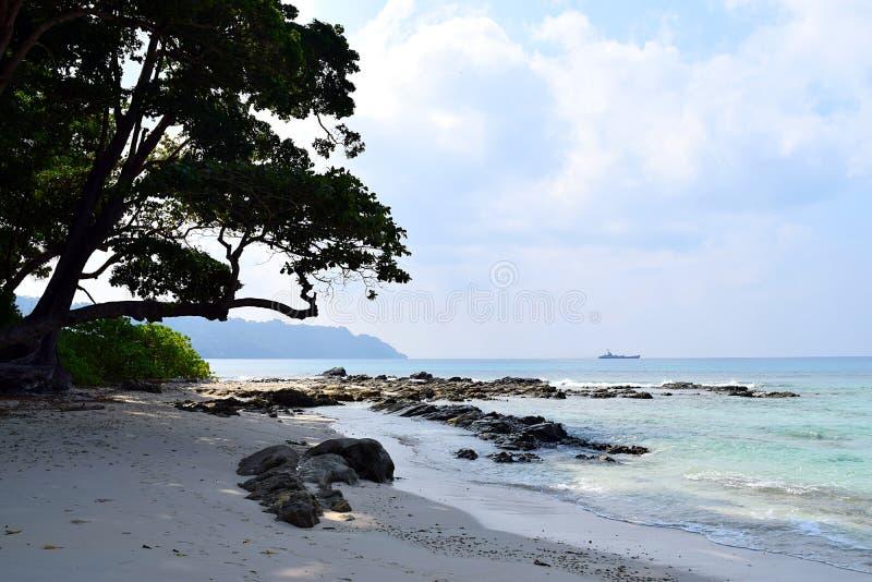 Холодная тень прибрежного дерева на каменистом и мирном пляже - ландшафте на пляже Radhanagar, острове Havelock, Andaman Nicobar, стоковое фото rf