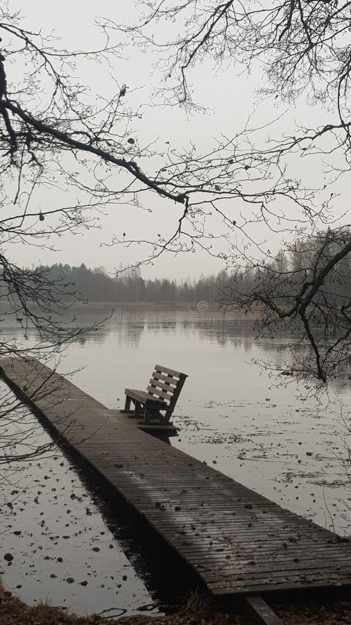 Холодное озеро стоковая фотография