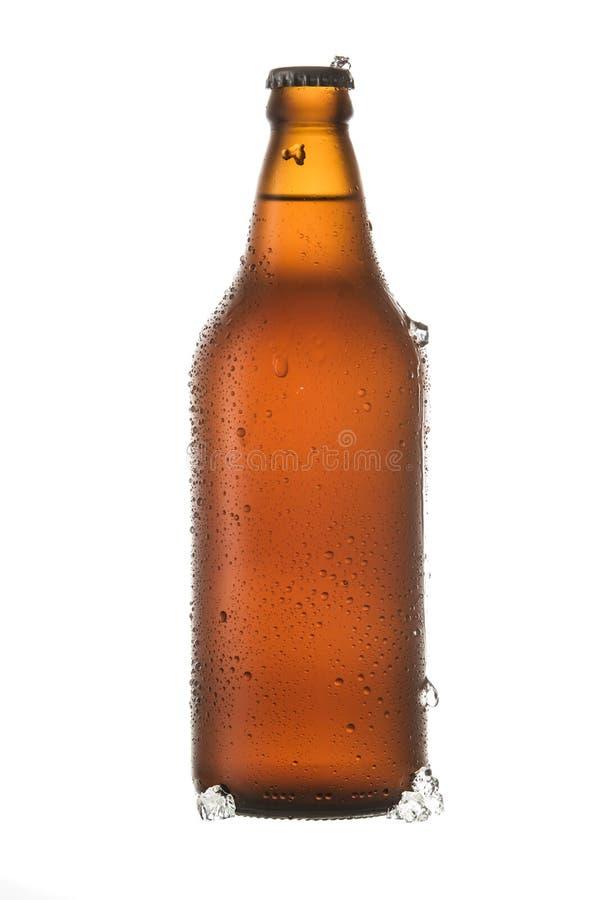 Холодное пиво с частями льда и падений бутылкой на белой предпосылке стоковая фотография