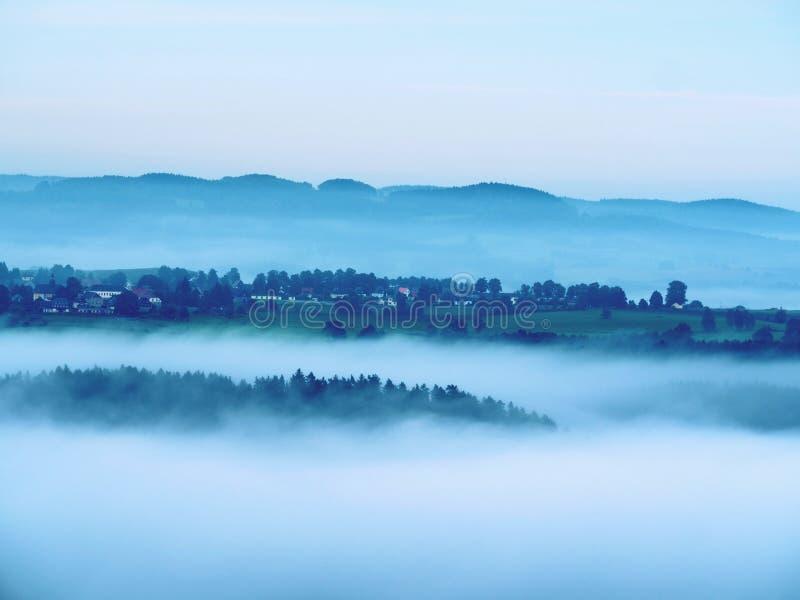 Холодное туманное голубое утро За минуту до восхода солнца в красивой долине скалистого парка Пики дерева стоковое фото