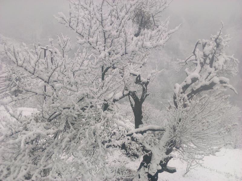 Холодность в деревне стоковые изображения rf