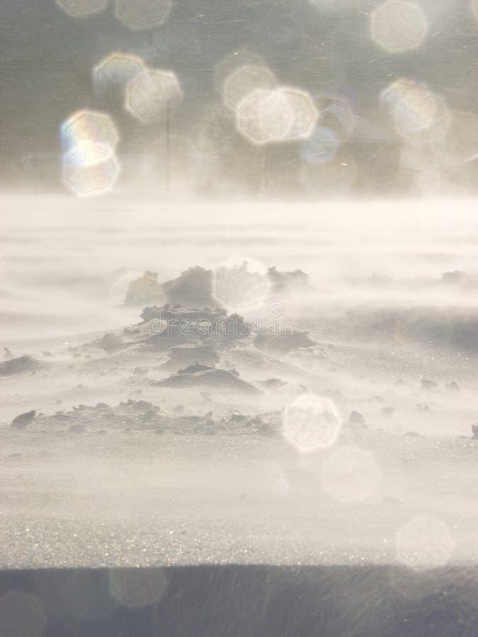 холодный ветер стоковая фотография