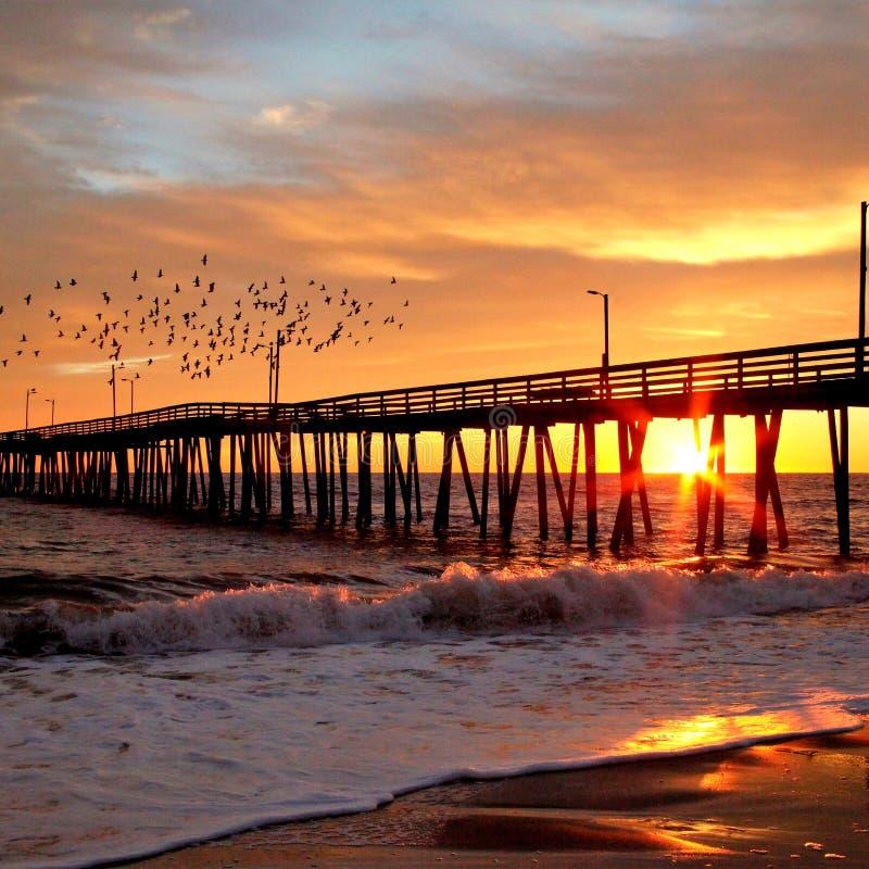 Холодный восход солнца, стать днем, по мере того как птицы забавляют вдоль пристани на Virginia Beach стоковые изображения rf