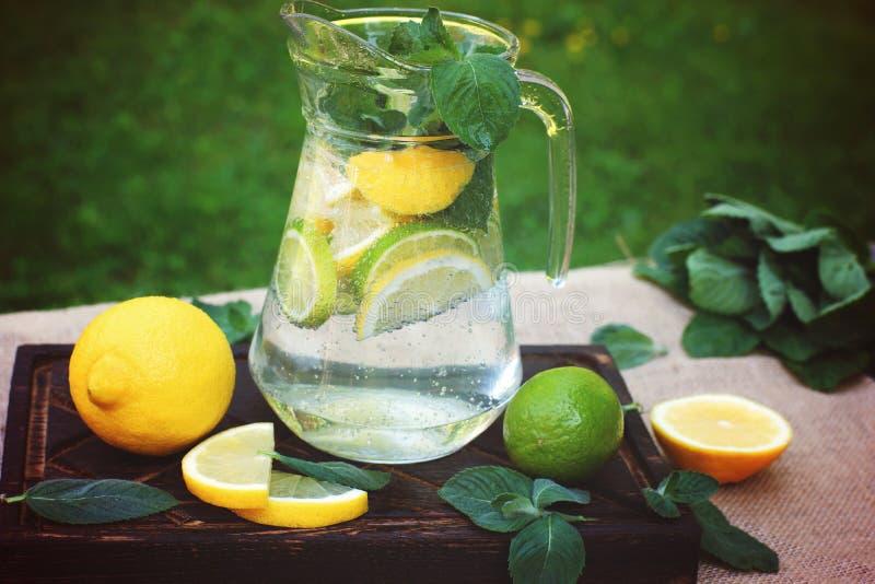 Холодный лимонад с лимоном, известкой и свежей мятой, полил в кувшин в луге летом стоковое фото rf