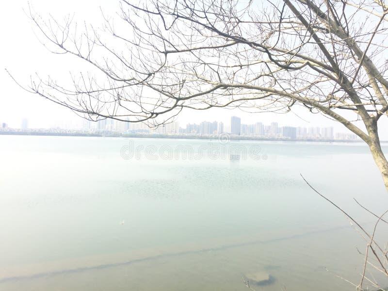 Холодок весны стоковое изображение rf