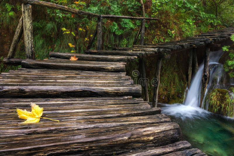 Хорватия Озера Plitvice Деревянный мост идя вверх маленький водопад стоковое фото rf