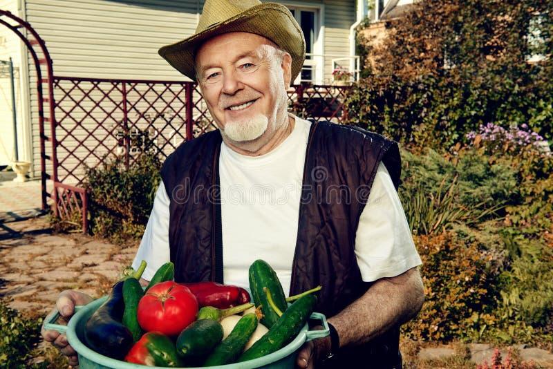 Хорошее vegetable сельское хозяйство стоковое фото rf