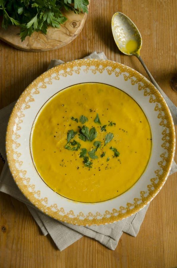 Хороший овощной суп стоковые изображения rf
