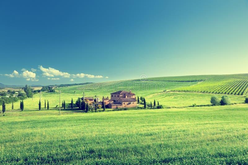 Холмы в солнечном дне Тоскане стоковое фото