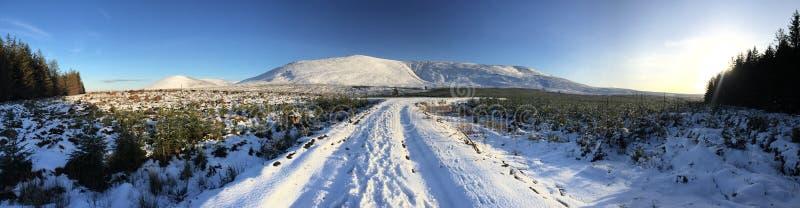 Холмы зимы стоковые фотографии rf