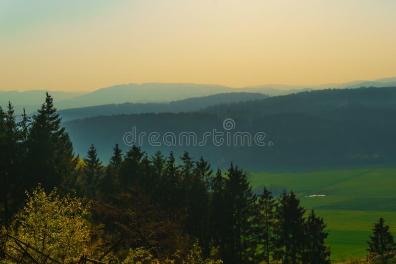 Холмы и поля туманной горы стоковые изображения rf