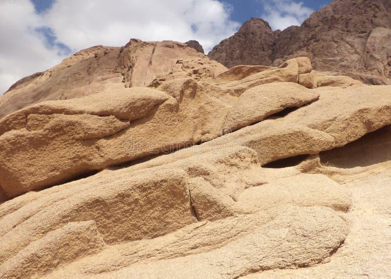Холмы песка в пустыне стоковая фотография rf