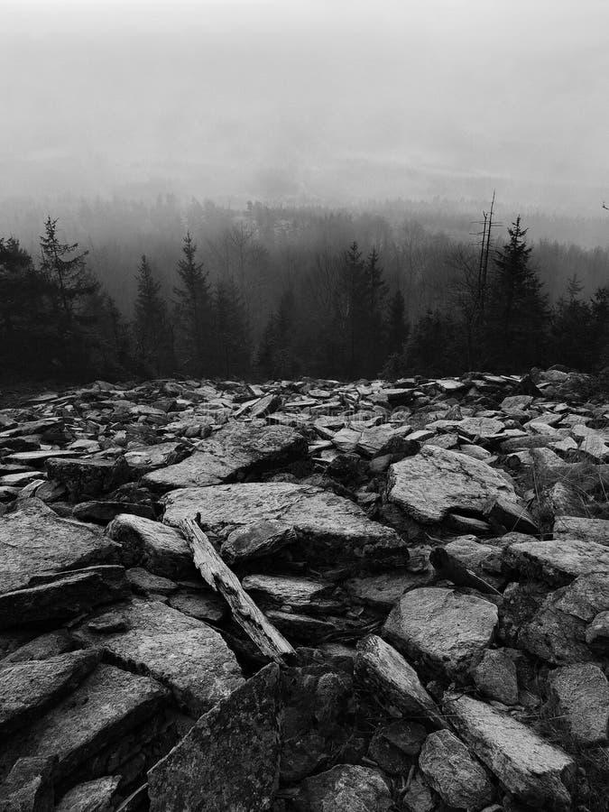 Холмы увеличенные от предпосылки осени раннего утра туманной. Черно-белое фото. стоковое фото