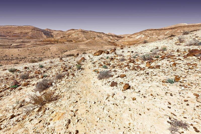 холмы утесистые стоковое фото rf