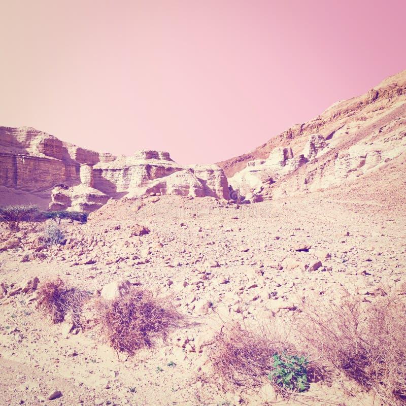 холмы утесистые стоковое изображение