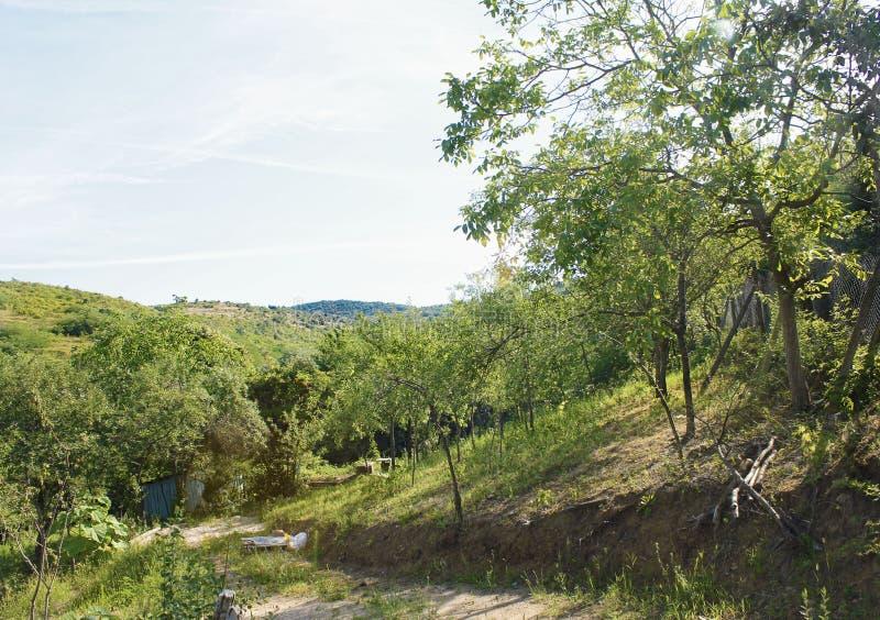 Холмы 4 Ghioroc стоковые изображения