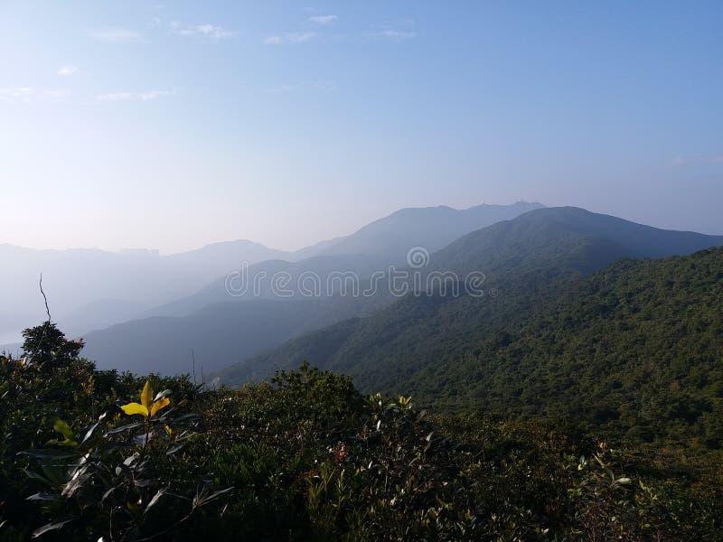 Холм снятый в парке страны Tai Tam стоковые фото