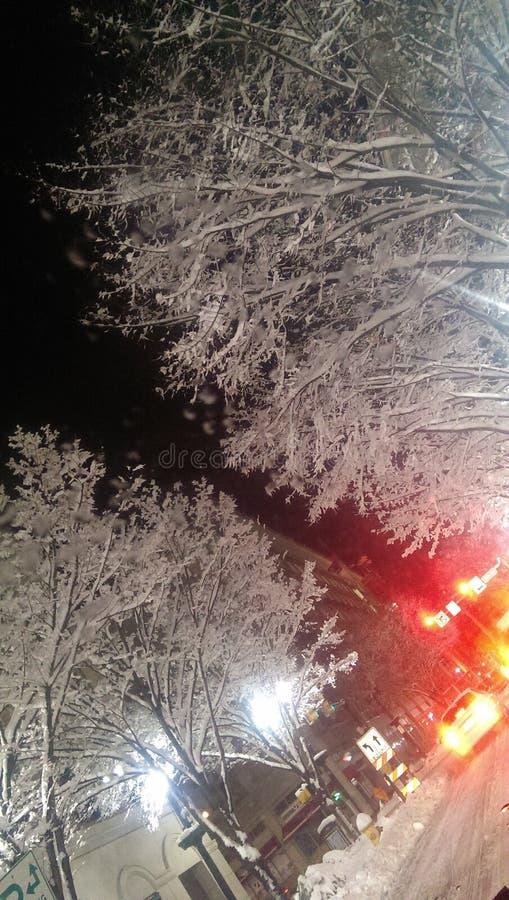 Холодная зима в городе стоковые фото