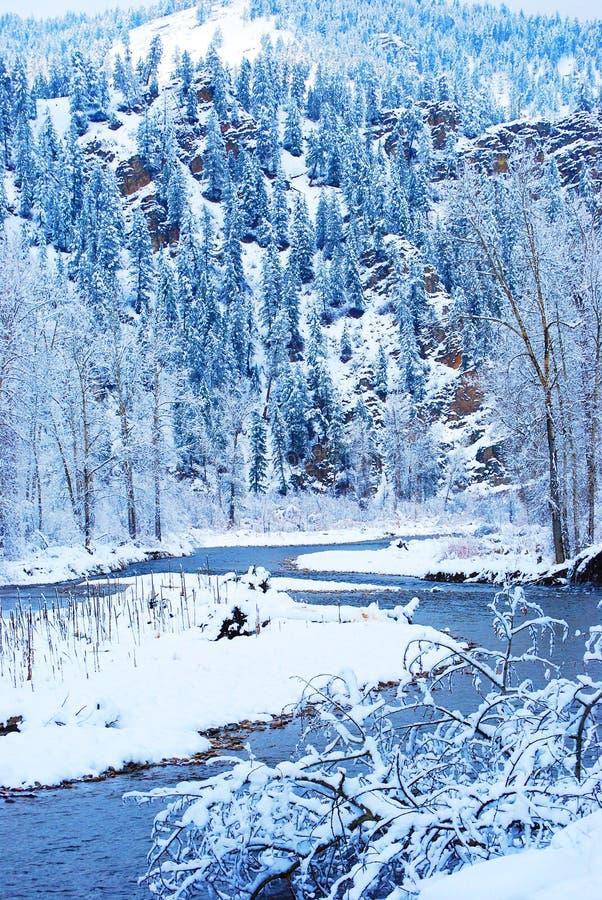 холодная зима стоковая фотография