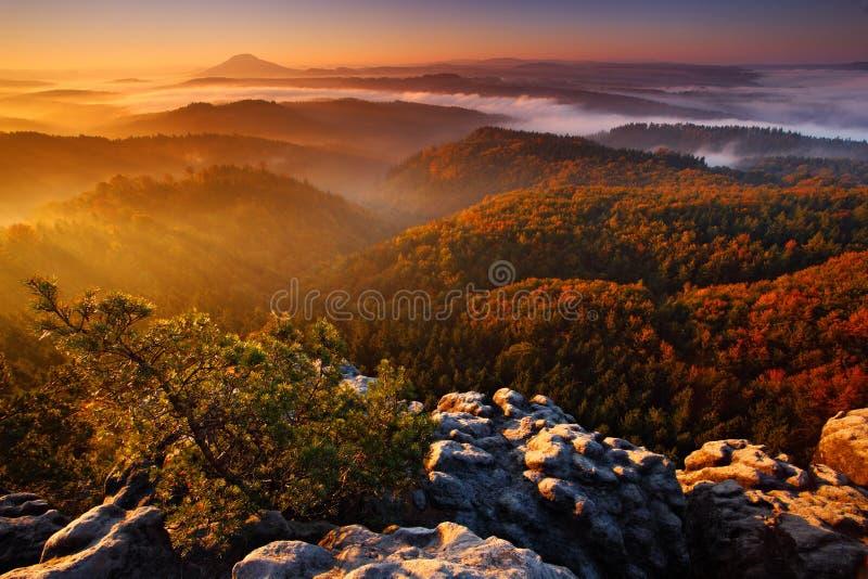 Холодное туманное туманное утро с восходом солнца в долине падения богемского парка Швейцарии Холмы с туманом, ландшафт чехии, стоковые фото