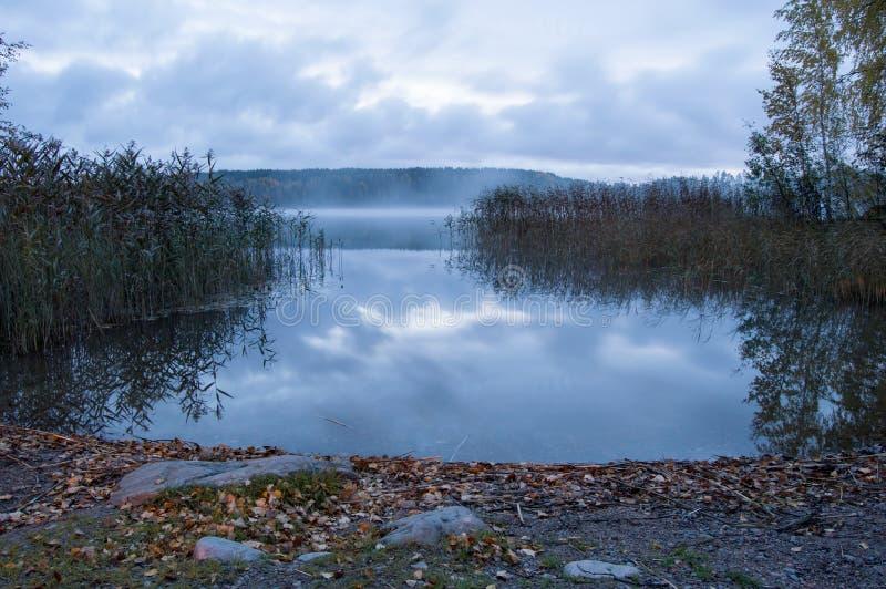 Холодное утро на озере стоковые фотографии rf