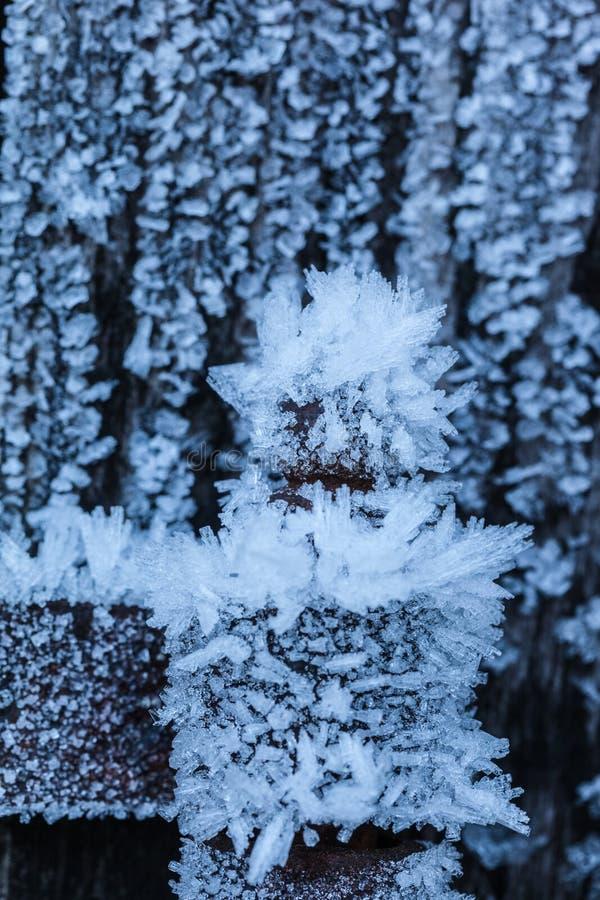 холодность стоковое изображение rf