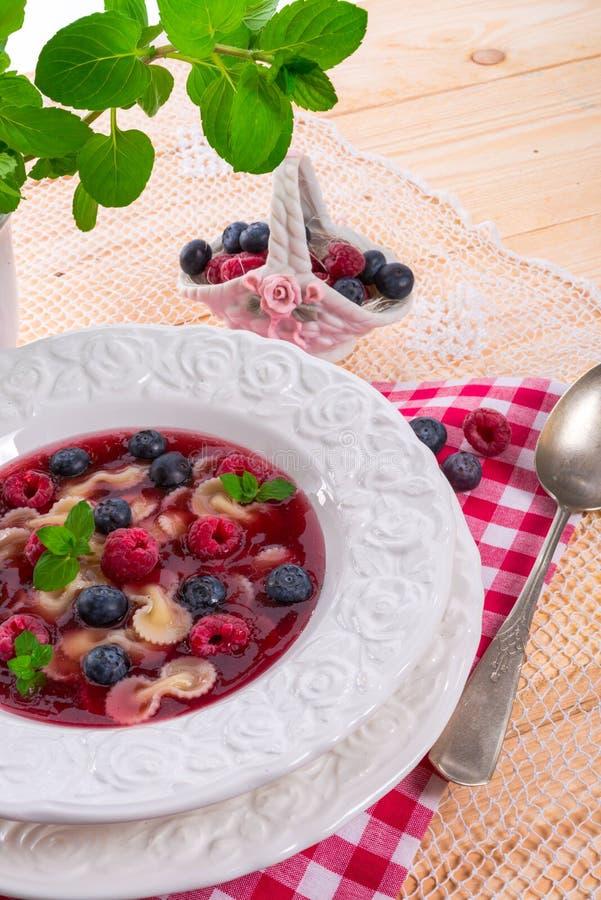 Download Холодный суп плодоовощ стоковое изображение. изображение насчитывающей сад - 40580715
