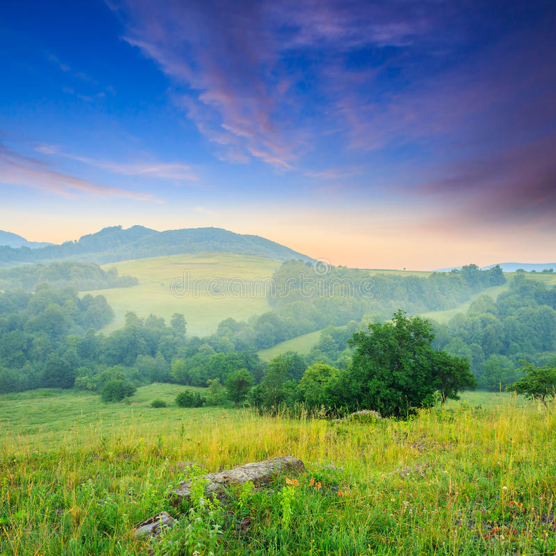 Download Холодный туман лета дальше в горах Стоковое Изображение - изображение насчитывающей трава, лето: 41658841