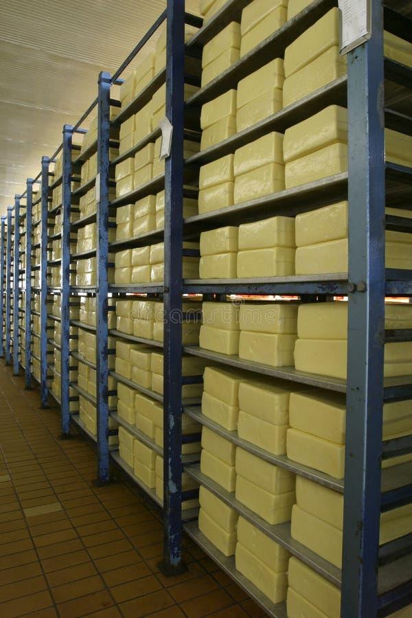 хранение молокозавода сыра стоковое фото rf