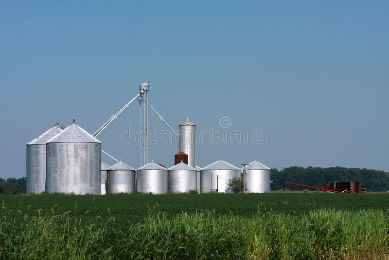 хранение фермы ящиков Стоковые Фото