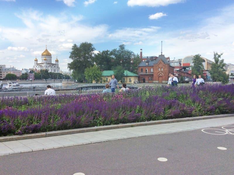 Христос река собора и Москвы спасителя, взгляд от парка Museon стоковая фотография rf