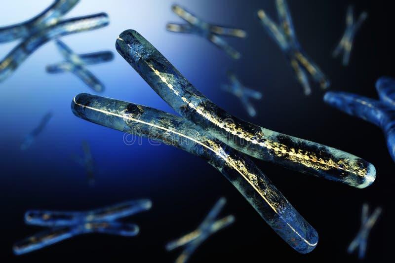 хромосома Дна бесплатная иллюстрация