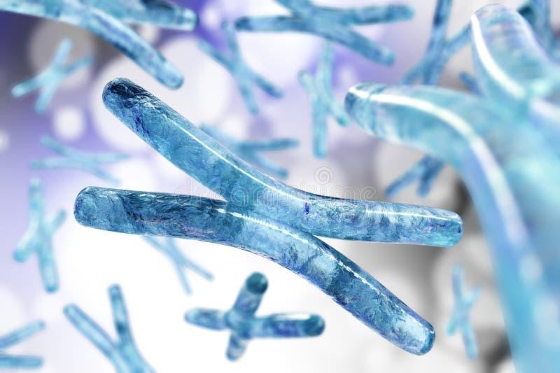 хромосома Дна иллюстрация штока