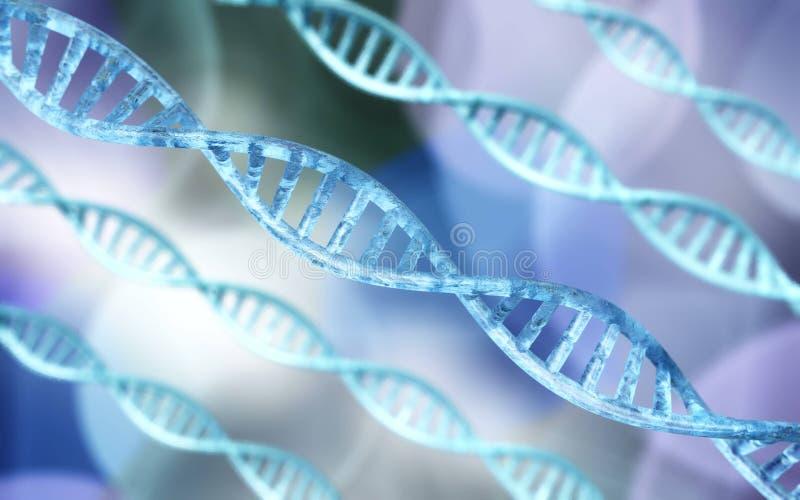 Хромосома x и ДНК бесплатная иллюстрация
