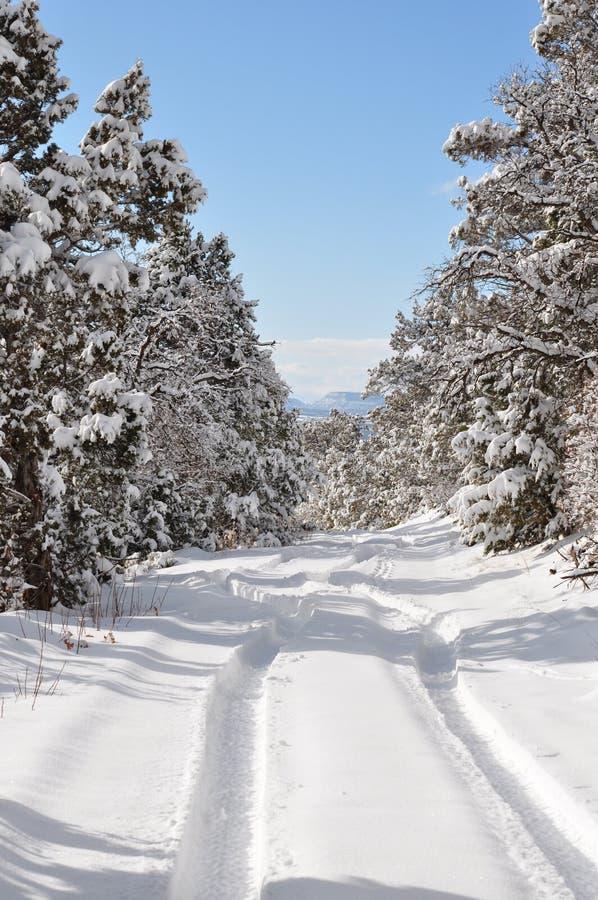 Хрустящее утро зимы на проселочной дороге стоковые изображения rf
