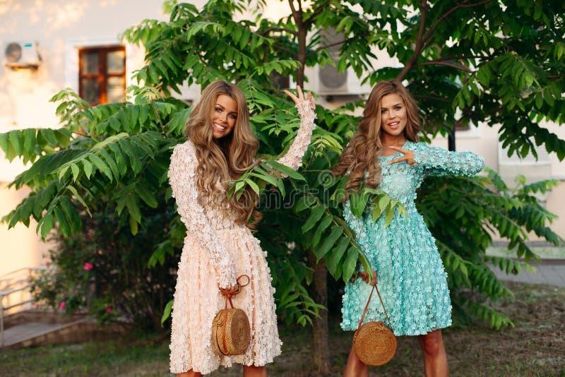 Худенькие дамы при длинные волнистые волосы держа стильную солому кладут в мешки стоковые изображения