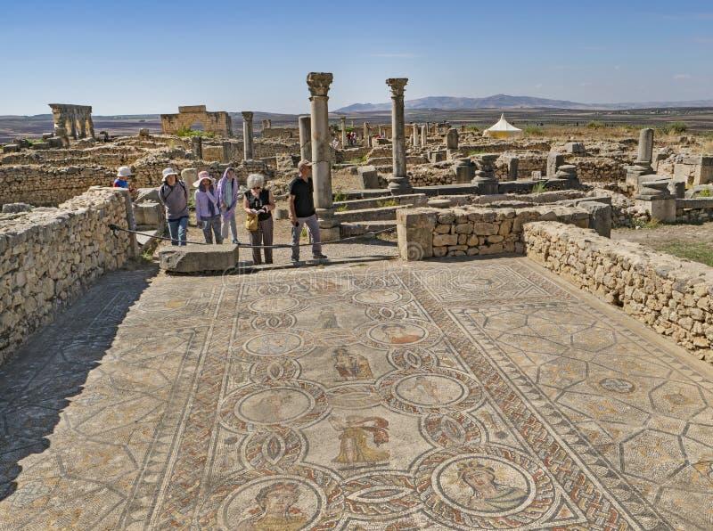 Художественные римские мозаики в Volubilis, Марокко стоковое фото rf