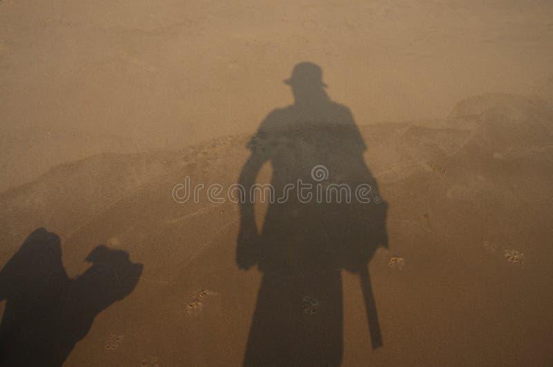 Художественный взгляд крупного плана теней человека и собаки на пляже стоковое изображение