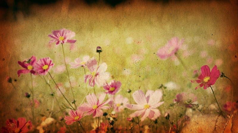 художнический фасонируемый цветок старый стоковое фото rf