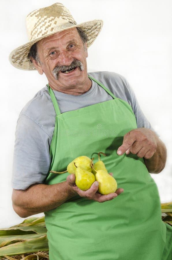 Хуторянин держит немного груш в его руке стоковые фото