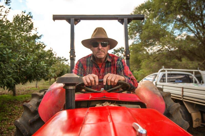Хуторянин на тракторе стоковые фото