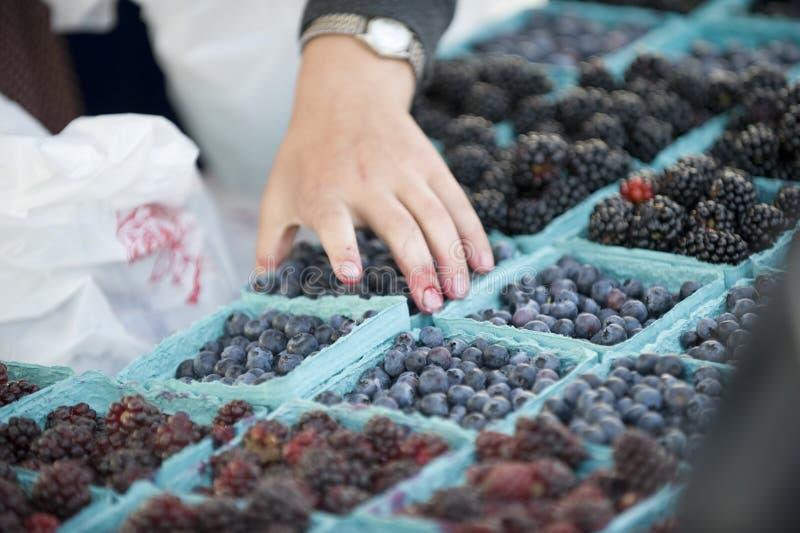 хуторянин ягоды выходят выбор вышед на рынок на рынок стоковые изображения