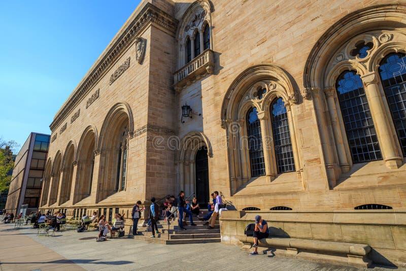 Художественная галерея Йельского университета стоковое фото