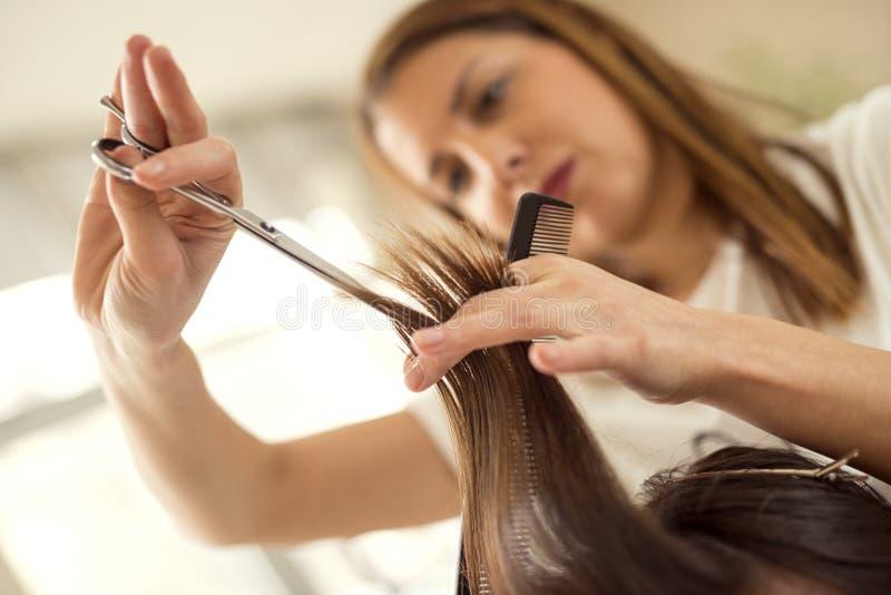 художнический вектор иллюстрации hairdress волос вырезывания стоковое фото rf