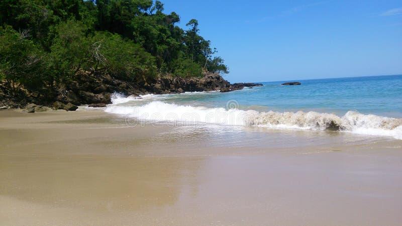 цаца, берег пляжа, море стоковая фотография rf