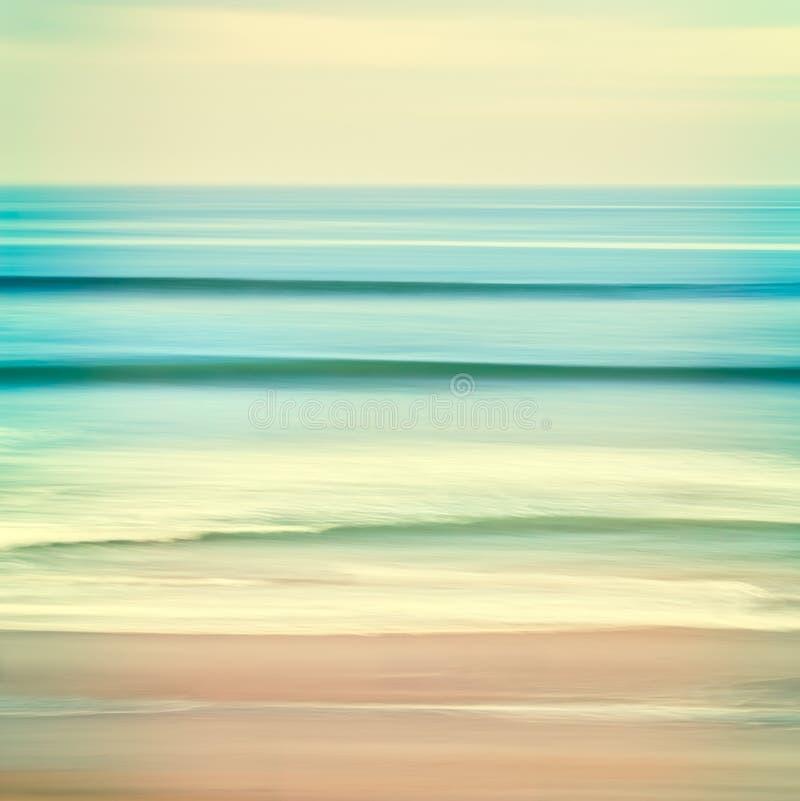 Цацы океана стоковые фотографии rf