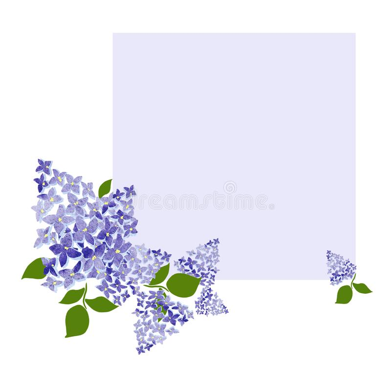 Цвести сирень на мягкой фиолетовой предпосылке Чертеж цветка ветви сирени, иллюстрация иллюстрация вектора