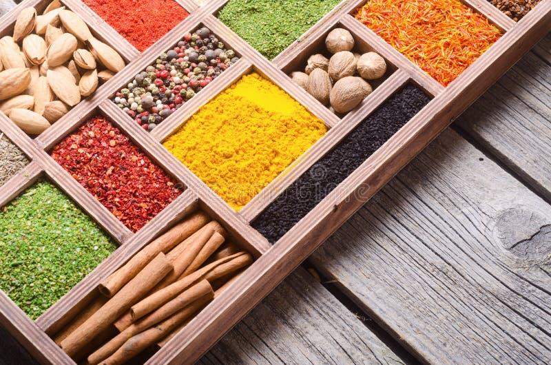 цветастые индийские специи стоковые изображения rf