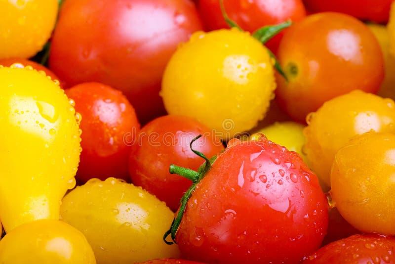 Цветастые красные, желтые и померанцовые томаты вишни стоковое изображение rf